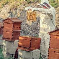 A beekeeper harvesting honey at the farm at Kokomo Private Island Fiji