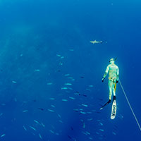 A guest snorkelling while holding a large fish caught spearfishing on a Kokomo Private Island Fiji fishing trip